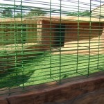 Austinview Kennels & Grounds